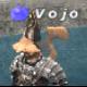 รูปส่วนตัว vojo